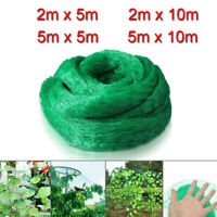 Anti Bird Bird-Preventing Net Netting Mesh For Fruit Crop Plant Tree Garden