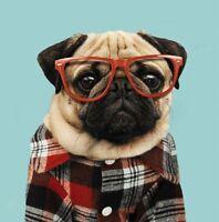 "Dog Birthday Card - Blank - ""Pug"" - Square Size - 6.25 x 6.25"" - 42333"