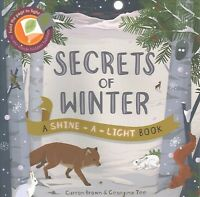 Secrets of Winter, Paperback by Brown, Carron, Brand New, Free shipping