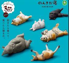 ZOOZOOZOO 4 Lazy Sleeping animal PVC Mini Figurine Figure Model 6 pcs Set Tiger