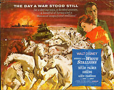 LIPPIZANERS STALLIONS/WW2 ARMORED TANKS orig DISNEY movie poster ROBERT TAYLOR