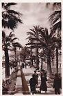 SAN REMO - Corso Imperatrice - Foto Cartolina Campassi 1936