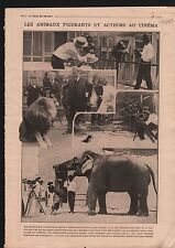 Elephant Lion Monkey Animal Contained Actor Film/Prohibition 1919 ILLUSTRATION