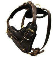 The Boss Leather Dog Harness with Handle Solid Brass