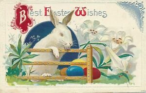 Cute Bunny Rabbit  at Fence with Eggs~Lily Flowers~Vintage Easter Postcard~c854