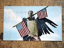 Patriotic Parrot Barney Benson Wild Animal Farm Hudson NH 1950
