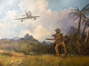 Original Acrylic Painting by P.Hill. Douglas A-4 Skyhawk. Vietnam 1966. NVA inf.