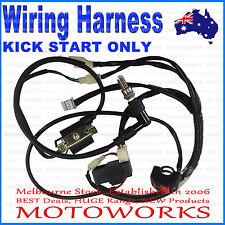 Full Electrics wiring harness 125cc PIT Dirt PRO BIGFOOT KICK START ONLY Bike A