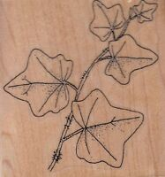 "leafy stem stamp cabana Wood Mounted Rubber Stamp 3x 3""  Free Shipping"