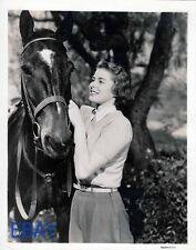 Ingrid Bergman w/horse VINTAGE Photo Rage in Heaven