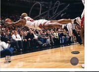 Dennis Rodman Autographed Chicago Bulls Horizontal Diving 8x10 Photo
