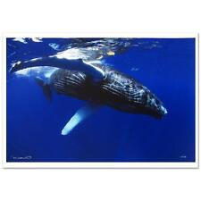 "Wyland  Limited Edition  Photograph  ""Calf "" Signed/Numbered  Sea Whale  COA"