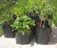 5x 30 Liter Pflanzsack Kartoffeln Tomate Paprika Rosenkohl Möhre Pflanztopf 30l