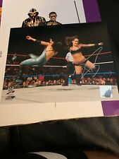 WWE BRIE BELLA HAND SIGNED AUTOGRAPHED 8X10 PHOTO
