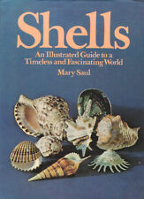 SHELLS Mary Saul **GOOD COPY**