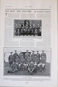 1903 PRINT WESTMINSTER DRAGOONS REVIEW ORDER OFFICERS NAMED CAPTAIN LARKING