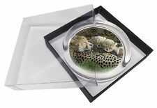 Cheetah and Newborn Babies Glass Paperweight in Gift Box Christmas Pres, AT-39PW
