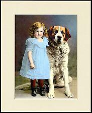 SAINT BERNARD AND LITTLE GIRL IN A BLUE DRESS DOG PRINT MOUNTED READY TO FRAME
