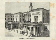 Stampa antica PADOVA il celebre Caffè Pedrocchi Veneto 1891 Old antique print