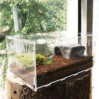 Reptile Terrarium Plastic Snake Insect Spider Tarantula Tank Pet reptile box HOT