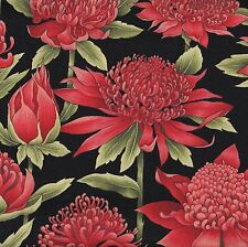 Australian Waratah Flowers on Black Floral Quilt Fabric Fat Quarter or Metre NEW