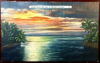 1944 Postcard Beautiful Miami Sea Night Scene Florida