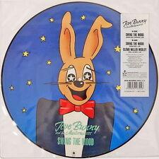 """Pop Vinyl-Schallplatten-Singles aus den USA & Kanada mit Maxi 12"""" - Plattengröße"""