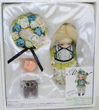 JUN PLANNING AI BALL JOINTED FASHION PULLIP DOLL GROOVE INC HYBRID STATICE Q-705
