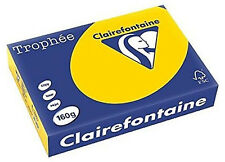 A4 Top Quality 160gsm Clairefontaine Coloured Craft Printer Copier Hobby Card Gold 50 Sheets 1600gsm