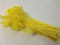 20 x 10-18cm Delicate Stripped YELLOW Goose Feathers DIY Art Craft Millinery