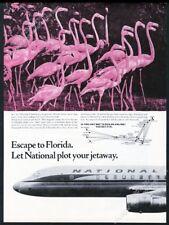 1964 pink flamingo flock photo National Airlines vintage print ad