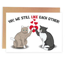 Funny Anniversary Birthday Valentine's Day Card For Husband - Sassy Cats Card