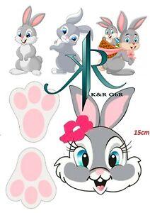 Hase, Kaninchen. Tortenaufleger,Geburtstag,Tortendeko
