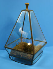 Table Top Pyramid Greenhouse Terrarium Garden Planter With Moss Trimmed Base