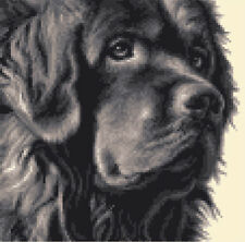BLACK NEWFOUNDLAND dog ~ full counted cross stitch kit