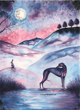A Whippet greyhound dog  Watercolour and ink  painting By Bridgette lee