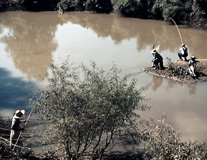 """1939 African Americans Fishing, Belzoni, MS Old Photo 8.5"""" x 11"""" Reprint"""