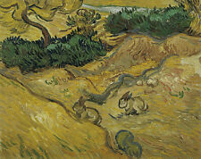 Vincent Van Gogh Field with Two Rabbits 1889 Vintage Print