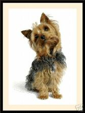 Terrier 2007, Cross Stitch Kit