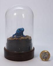 "Miniaturskulptur aus Buchsbaumholz ""Azurblauer Baumsteigerfrosch"""