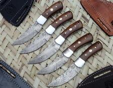 """Lot of 5 Custom Handmade Damascus Steel 6"""" Hunting Knife Rose Wood Steel Bolster"""