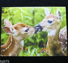 Leanin Tree Loving Thought Love Greeting Card Doe Deer Fawn Multi Color R89