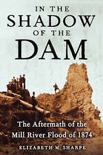 NEW In the Shadow of the Dam: The Aftermath of the Mill River Flood of 1874