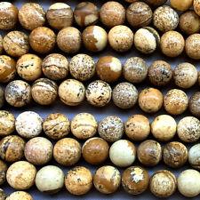 Picture Jasper 8mm Smooth Round Ball Semi Precious Stone Q24 Beads per Pkg