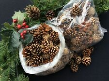 """""""LARGE BOX 100"""" MIXED SIZES PINE CONES. CHRISTMAS CRAFTS. GARLANDS 4-10cm APPROX"""