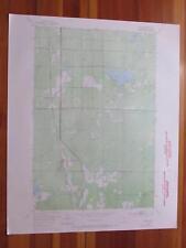 Payne Minnesota 1971 Original Vintage USGS Topo Map