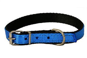 BLUE Strong NYLON Dog Puppy Collar BLACK PADDED Web