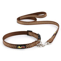 Brown Polka Dot Dog Collar and Matching Lead Set - Puppy and Dog