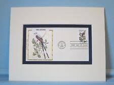 State Bird & Flower of Oklahoma- the Flycatcher & Mistletoe & First Day Cover