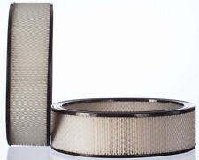 Air Filter-DIESEL FEDERATED FILTERS PA3181F